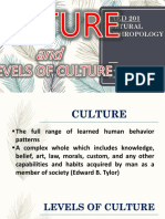 CULTURE AND LEVELS OF CULTURE IN CULTURAL ANTHROPOLOGY.pptx