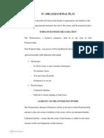Organizational plan draft 2