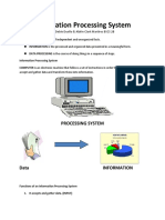 Information-Processing-System.docx
