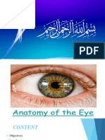 anatomy of eye-converted