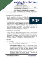 02 TDR-ET SALDO DE OBRA SAP DSG ALTO PERU.docx