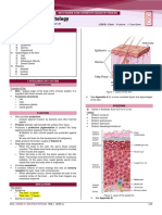 B4M1L3 - Skin and Muscle Histology - SGD1.pdf