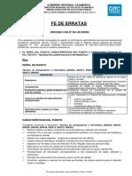 FE DE ERRATAS-_0