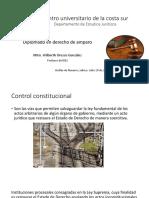2. Control Jurisdiccional de la Constitución.pptx