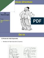 Do-In Triplo Aquecedor Fígado Vesícula Biliar Vaso Governador - Carlos Bueno.pdf