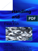 FISH -TLE.pptx