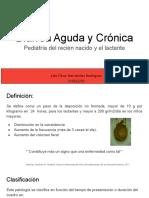 Diarreas-Pedia 1