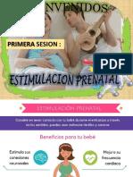 ESTIMULACION PRENATAL SESIONES (1).pptx ULTIMO
