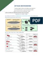 génétique-microbienne