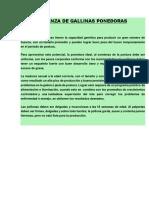CRIANZA DE GALLINAS PONEDORAS.docx