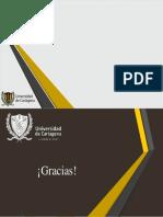 Plantilla 2019 udc