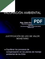 VALORACION AMBIENTAL 2019