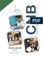 6o grado CNB Nivel de Educación Primaria.pdf