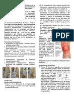 TEMA 19 TX DE LA PIERNA.docx