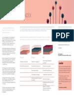 The-Inclusion-Index_Sales-Flyer.pdf