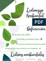 Liderazgo ambiental 1