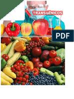 Alimentos transgénicos - imagen