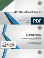 SEMINARIO CROMATOGRAFIA DE GASES.pptx