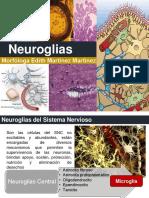 Neurotema 9 Neuroglias