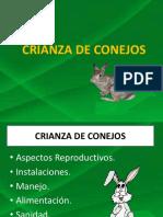 crianzadeconejos-160513010909