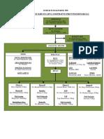 struktur organisasi ppi 2018