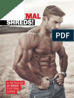 RT-Maximal-Shreds