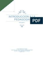 INTRODUCCION A LA PEDAGOGIA RESUMEN 1 LA PRACTICA PROFESIONAL DEL PEDAGOGO