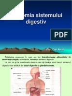 Lectie 20 Anatomia Sistemului Digestiv.