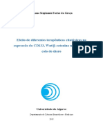 Tese_versão_final.pdf_final