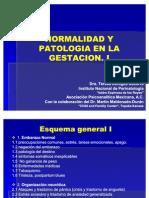 Normal Id Ad y Patologia en La Gestacion