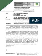 INFORME TECNICO N° OO2 INCENDIOS EN BOLOGNESI pdf
