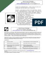 火山能量石挂 chinese & english 2010
