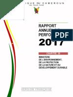 Rapport-annuel-de-performance-2017-minepndd (1)