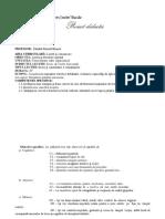 ROMÂNĂ_CLASA A VI-A_PROIECT DIDACTIC_PASTELUL.pdf