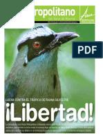 periodico-el-metropolitano-edicion-33-lucha-contra-el-trafico-de-fauna-silvestre