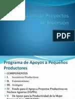 Elaboración de Proyectos de Inversión