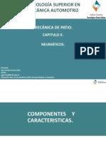 Neumaticos (2).pptx