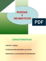 Neumaticos (3)
