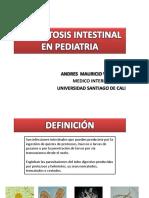 parasitosis-160827012633