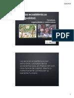 ES y desigualdad social_final.pdf