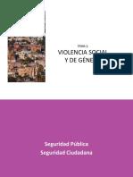 PP-VIOLENCIA-DE-GENERO