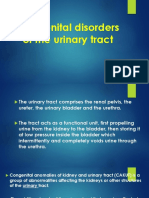 Congenital disorders of the urinary tract