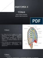 Torax pared