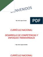 DESARROLLO DE COMPETENCIAS Y ENFOQUES TRANSVERSALES