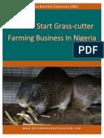 Grasscutter-Farming-In-Nigeria