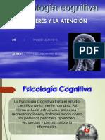 Psc.cognitivaa