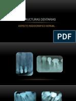 4 estructura dentaria normal ultimo-1