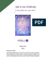 Cristais e Chakras.pdf
