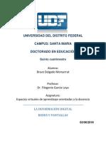 ESPACIOS VIRTUALES 2.docx