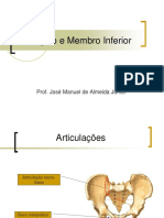 Cíngulos e Membros Inferiores